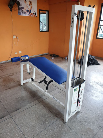 """COMBO"" Cadeira Extensora + Flexora ""PHYSICUS"" - Foto 6"