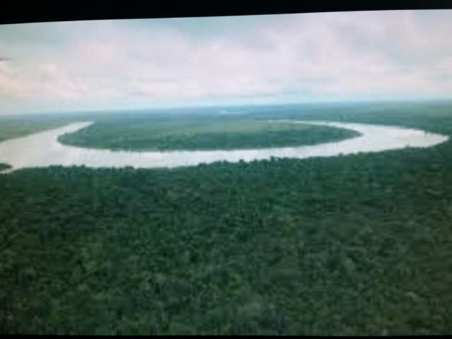 Área de 122.000 hectares na amazônia - Foto 4