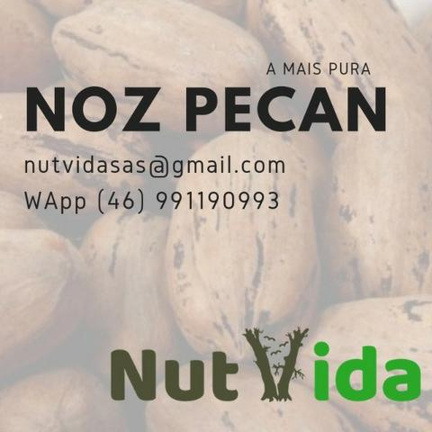 Nozes Pecan