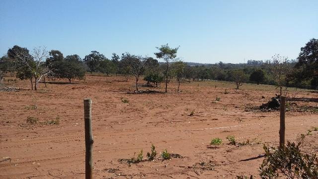 Chácara 14 km de Campo Grande - 9,8 hectares - Foto 5