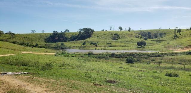 Fazenda a venda no extremo sul da bahia 170 ha - Foto 13