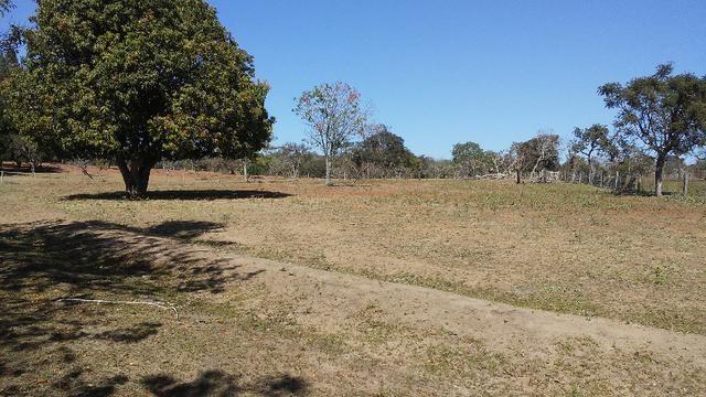 Chácara 14 km de Campo Grande - 9,8 hectares - Foto 16