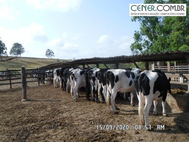 1876/Extraordinária fazenda de 160 para agricultura e pecuária - Foto 16