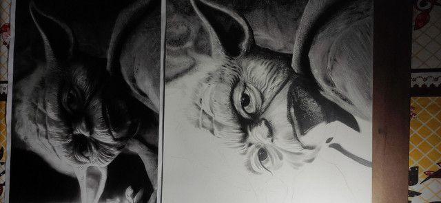 Mestre Yoda - Foto 3