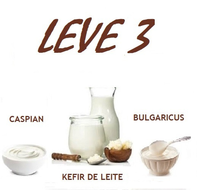 Kefir De Leite, Csy, Bulgaricus  . Leve 3