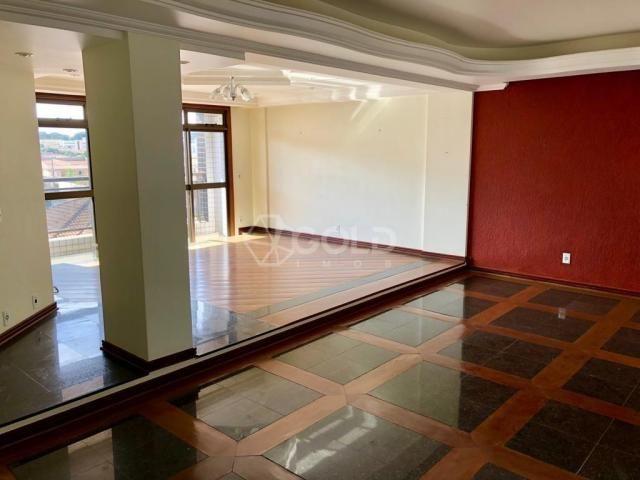 Apartamento à venda, 3 quartos, 2 vagas, cidade nova - franca/sp - Foto 3
