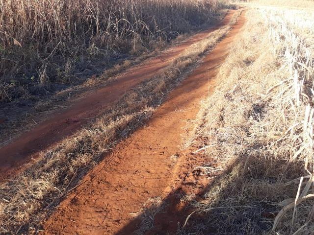 Fazenda de 28 alqueires ( 135 hectares ) Paraúna-GO ( soja ) - Foto 2