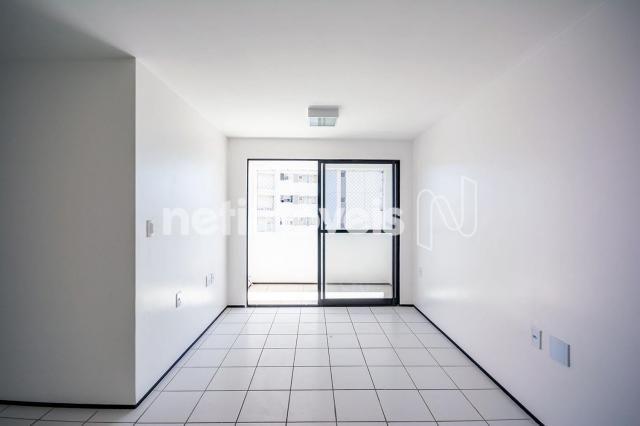 Apartamento para alugar com 3 dormitórios cod:776602 - Foto 2