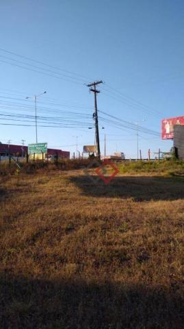 Terreno à venda, 4.200 m² - nova caruaru - caruaru/pe - Foto 14