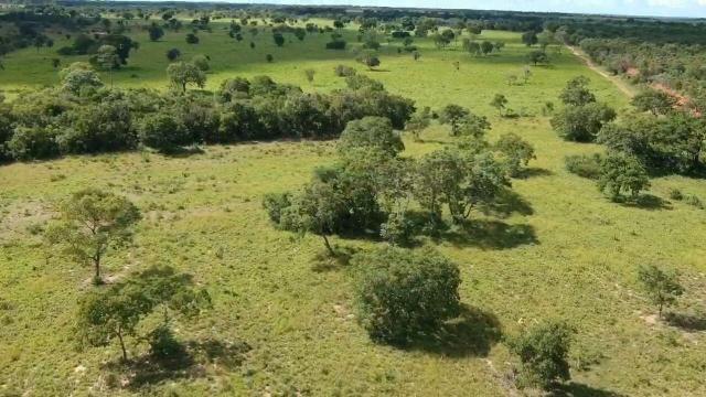Fazenda em livramento 514 hectares - Foto 4