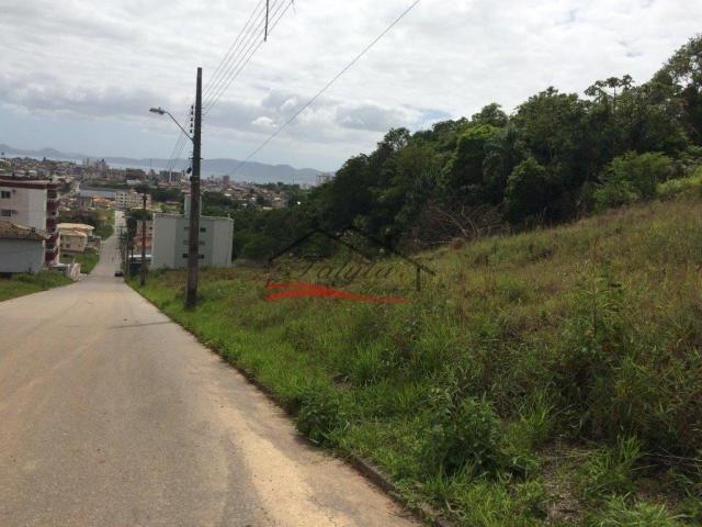 Terreno à venda em Ipiranga, São josé cod:43 - Foto 17