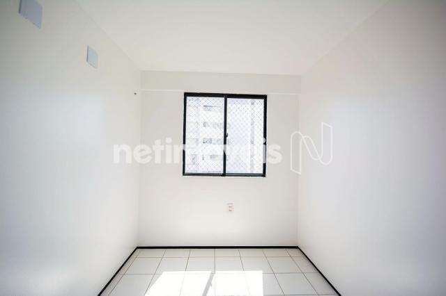 Apartamento para alugar com 3 dormitórios cod:776602 - Foto 9