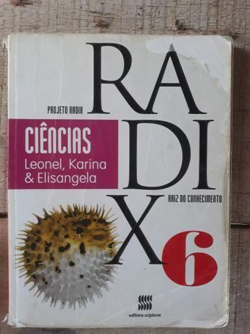 Projeto radix - 6 ano - Foto 4