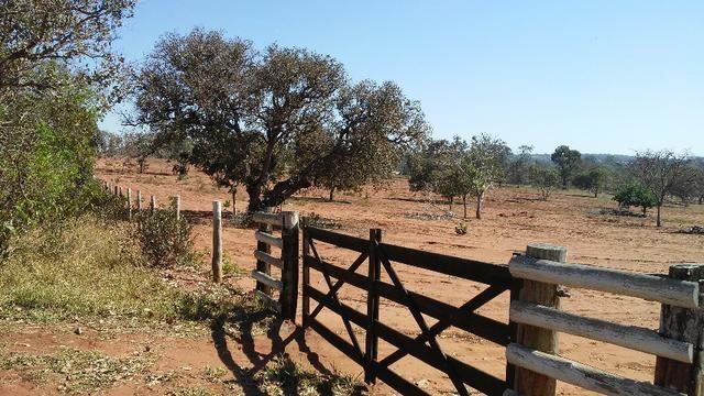 Chácara 14 km de Campo Grande - 9,8 hectares