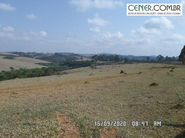 1876/Extraordinária fazenda de 160 para agricultura e pecuária - Foto 5