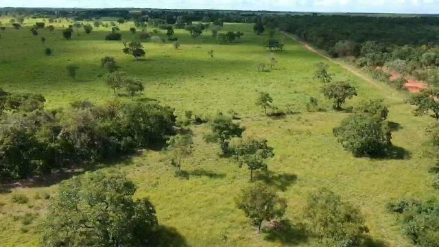 Fazenda em livramento 514 hectares - Foto 2