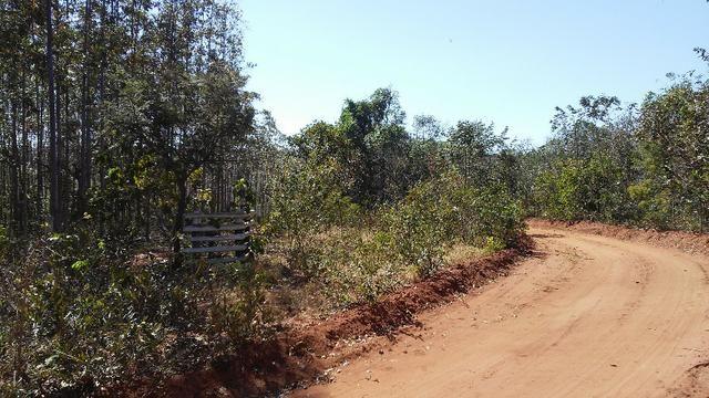 Chácara 14 km de Campo Grande - 9,8 hectares - Foto 20