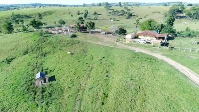 Fazenda a venda no extremo sul da bahia 170 ha - Foto 12