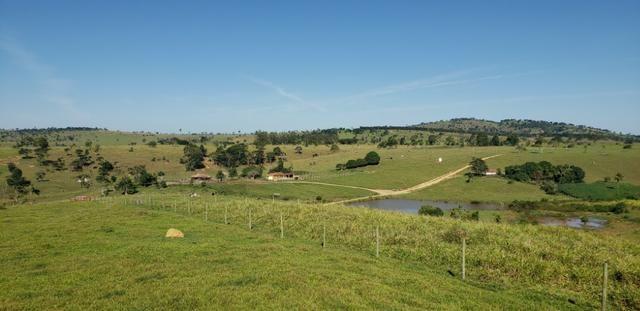 Fazenda a venda no extremo sul da bahia 170 ha - Foto 16