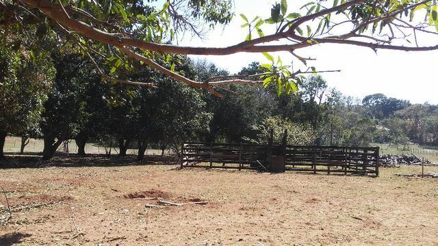 Chácara 14 km de Campo Grande - 9,8 hectares - Foto 7