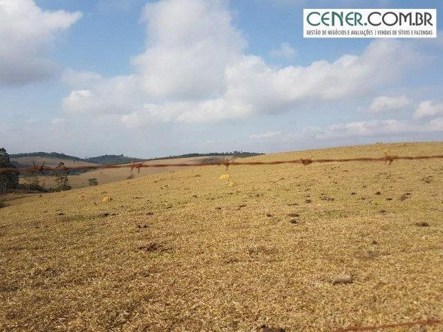 1876/Extraordinária fazenda de 160 para agricultura e pecuária - Foto 2