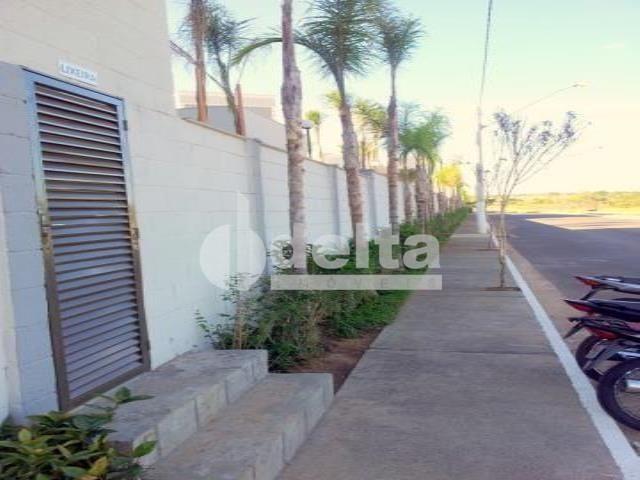 Apartamento à venda com 2 dormitórios em Shopping park, Uberlandia cod:33306 - Foto 6