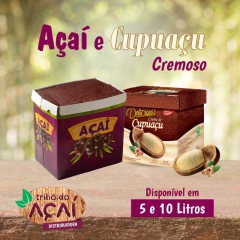 Distribuidor de Caixa de Açaí Cremoso, Cupuaçu 10 e 5 Litros