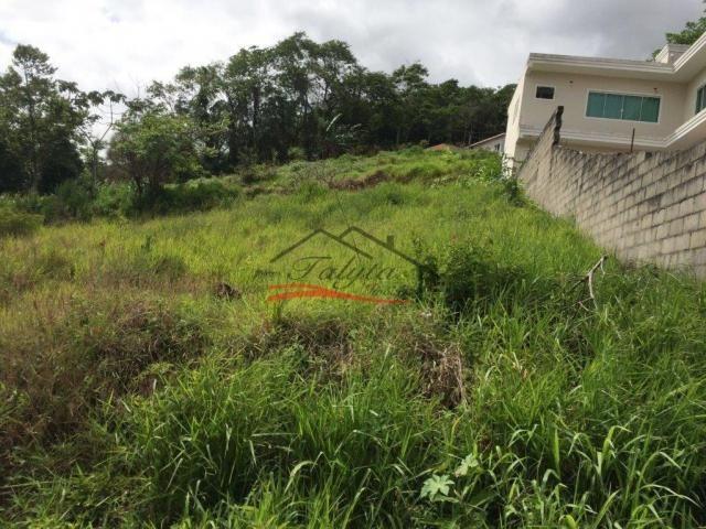 Terreno à venda em Ipiranga, São josé cod:43 - Foto 7