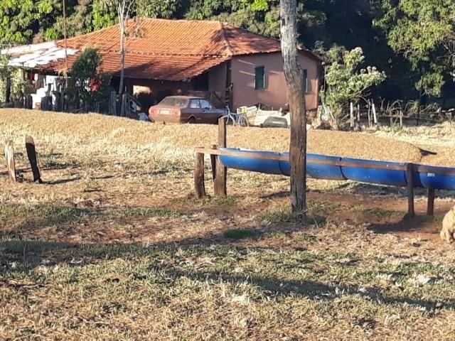 Fazenda de 28 alqueires ( 135 hectares ) Paraúna-GO ( soja ) - Foto 5
