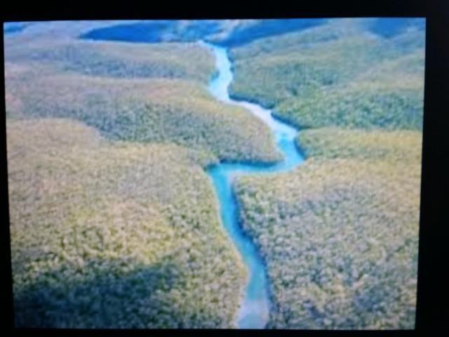 Área de 122.000 hectares na amazônia - Foto 2