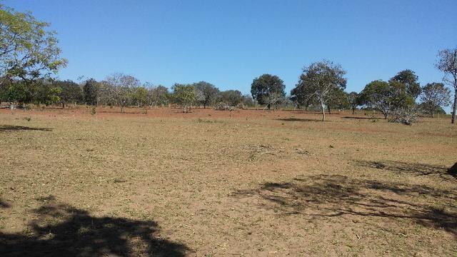 Chácara 14 km de Campo Grande - 9,8 hectares - Foto 10