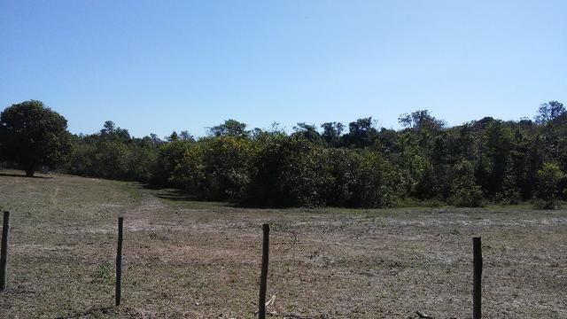 Chácara 14 km de Campo Grande - 9,8 hectares - Foto 12