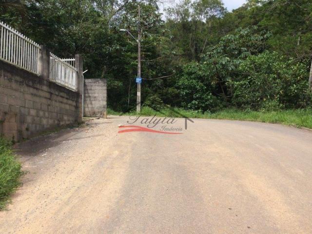 Terreno à venda em Ipiranga, São josé cod:43 - Foto 20