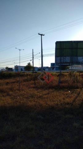 Terreno à venda, 4.200 m² - nova caruaru - caruaru/pe - Foto 12