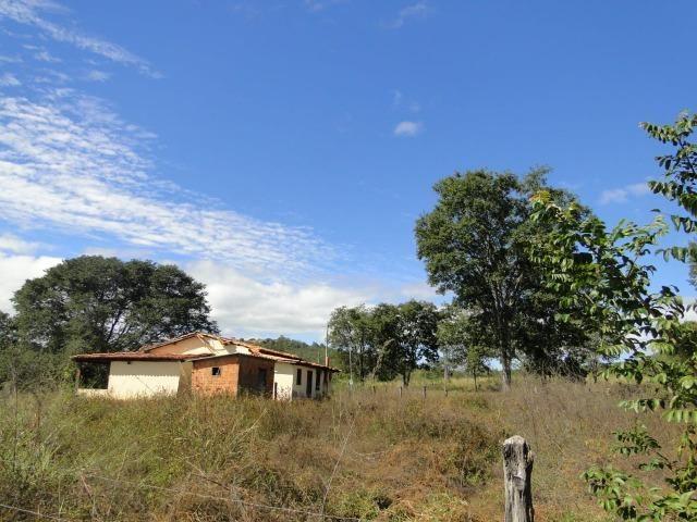Fazenda 157 hectares na beira do rio Parauna - Foto 6