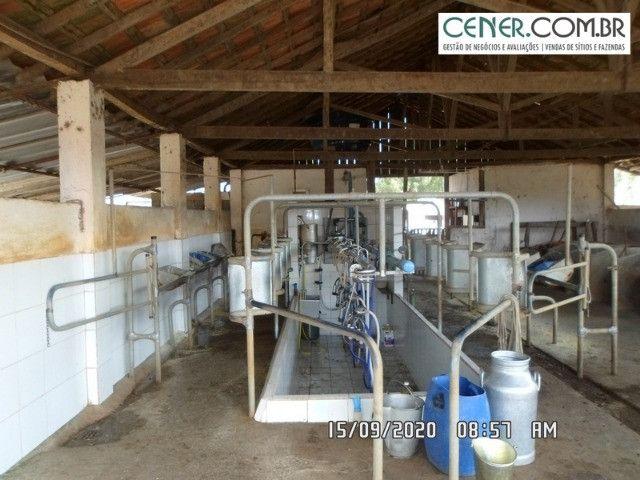1876/Extraordinária fazenda de 160 para agricultura e pecuária - Foto 11