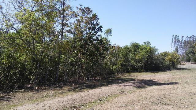 Chácara 14 km de Campo Grande - 9,8 hectares - Foto 17