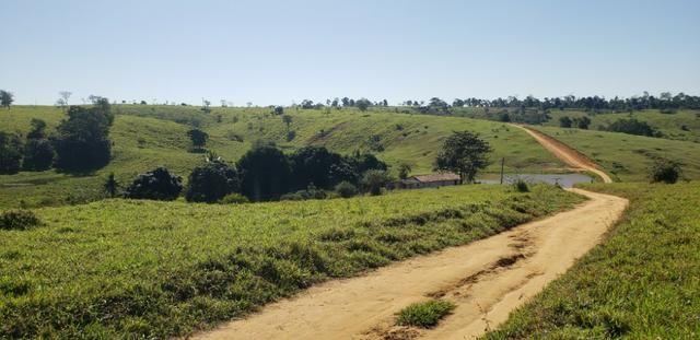 Fazenda a venda no extremo sul da bahia 170 ha - Foto 17