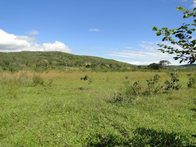 Fazenda 157 hectares na beira do rio Parauna - Foto 4