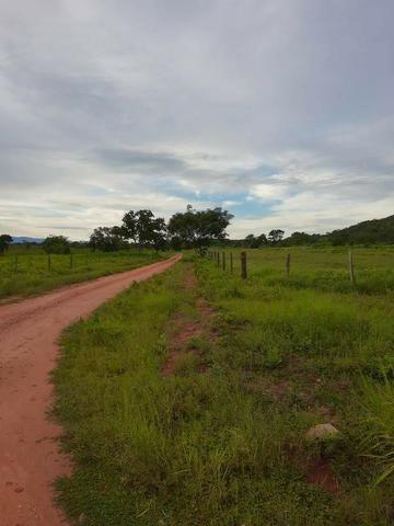 2.200 alqs Solo Argiloso Região De Chuva Palmeirópolis TO - Foto 3