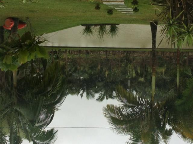 Alugo Chácara por dia em Guaramirim - Foto 15