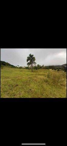 Belíssima área de terra em Morro Reuter - Foto 5