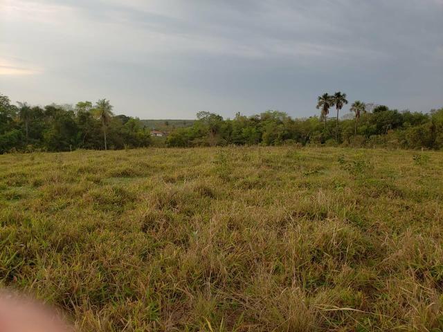 Fazenda pecuária R$ 12.000,00 por HA - Foto 3