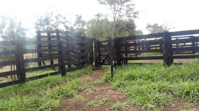 1270 hectares. Terra de Furmas, 100% pecuária - Foto 5