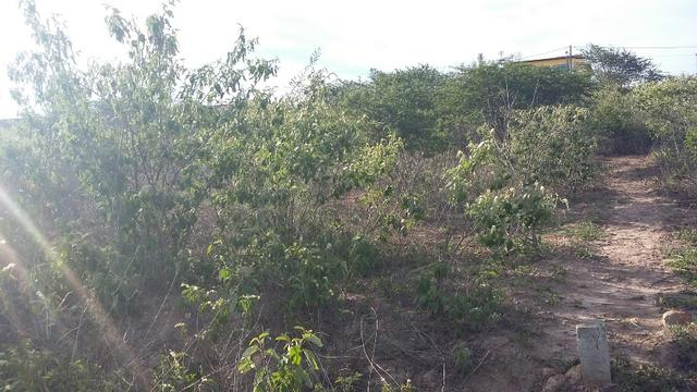 Um terreno no Loteamento Fazenda Riacho do Mel - Foto 4