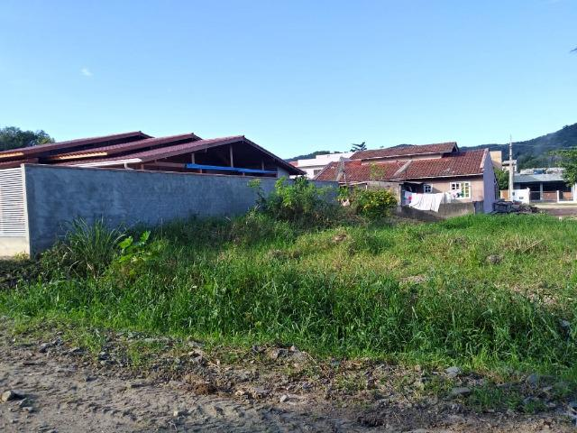 Excelente terreno na Praia de Zimbros / Bombinhas SC - 275 m2 - Foto 2