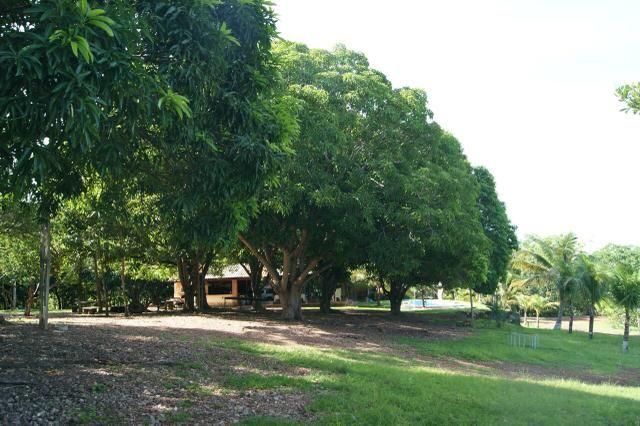 Fazenda 70 hectares á venda á 16km de Cuiabá - Foto 6
