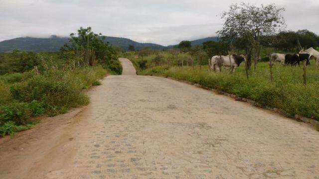 Ótima fazenda pitombeira em vertentes, com 161 hectares - Foto 2
