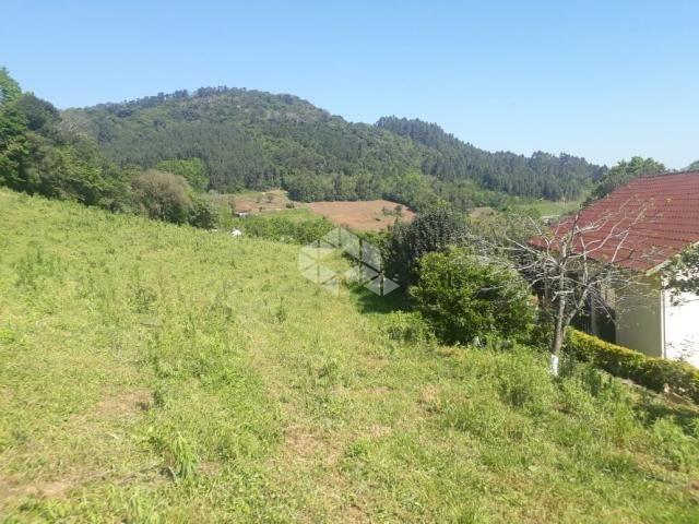 Chácara à venda em São luiz de castro, Boa vista do sul cod:9912945 - Foto 3