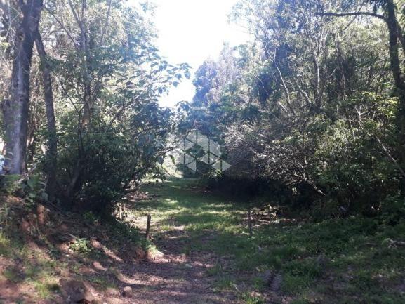 Chácara à venda em São luiz de castro, Boa vista do sul cod:9912945 - Foto 19